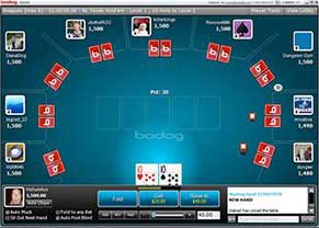 Bodog poker screenshot of poker play